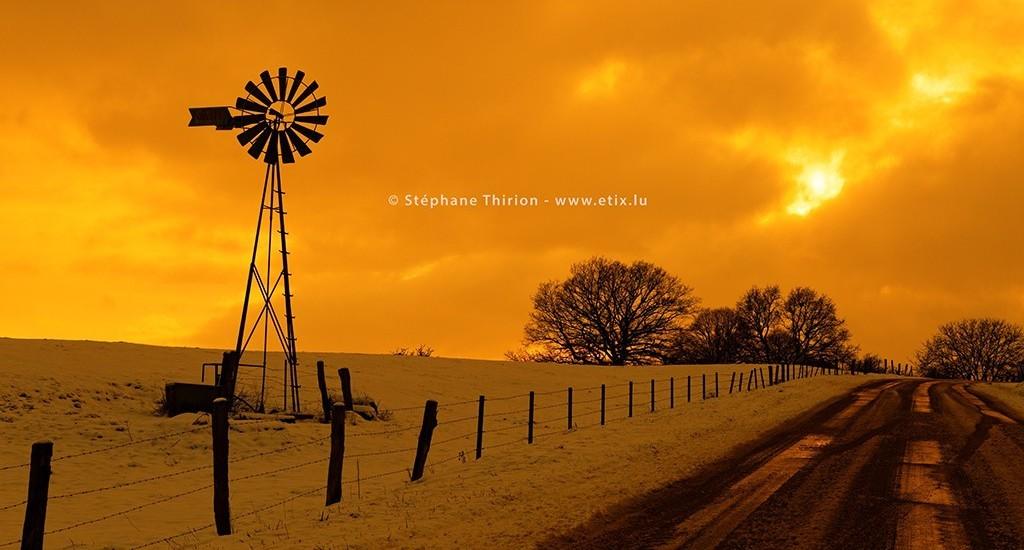Stéphane Thirion photographie nature Virton province de Luxembourg