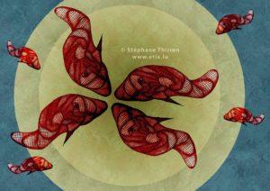 Bassin poisson rouge illustration Stéphane Thirion