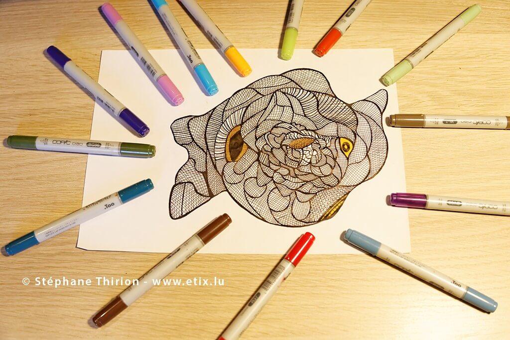 Dessin-abstrait-deux-sens-au-marqueur-Stephane-Thirion