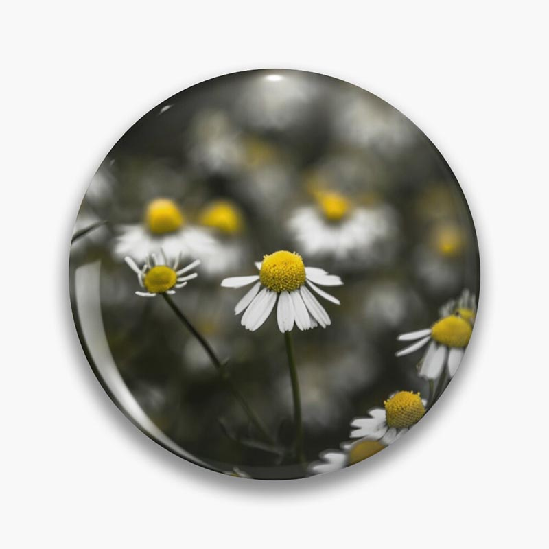 badge marguerite fond noir